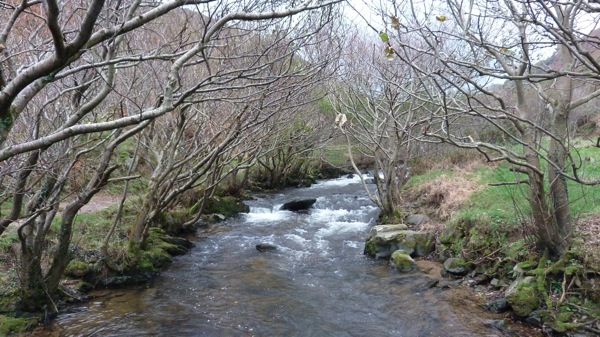 The River in the Heddon Valley